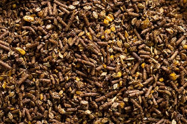 Sweet 14 horse cattle feed Atlas Feed Mills